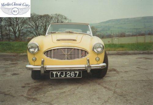 Austin Healey Restoration Photos Rare Primrose Over OE White 1