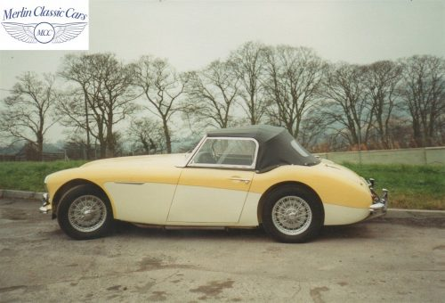 Austin Healey Restoration Photos Rare Primrose Over OE White 9