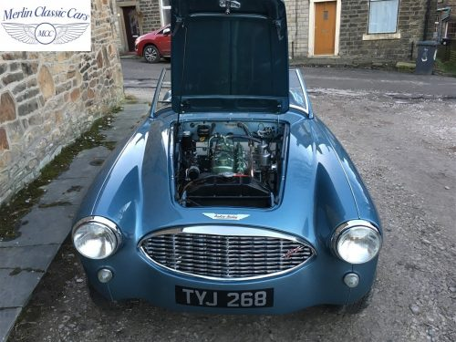 Austin Healey For Sale 100 6 69