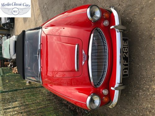Austin Healey For Sale 13