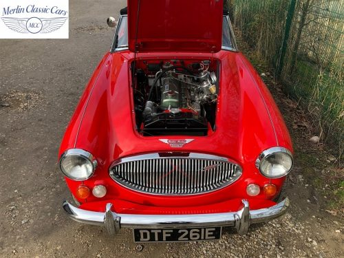 Austin Healey For Sale 8